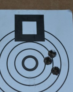 Representative group fired at 100 yards, Federal 175 grain Gold Medal.