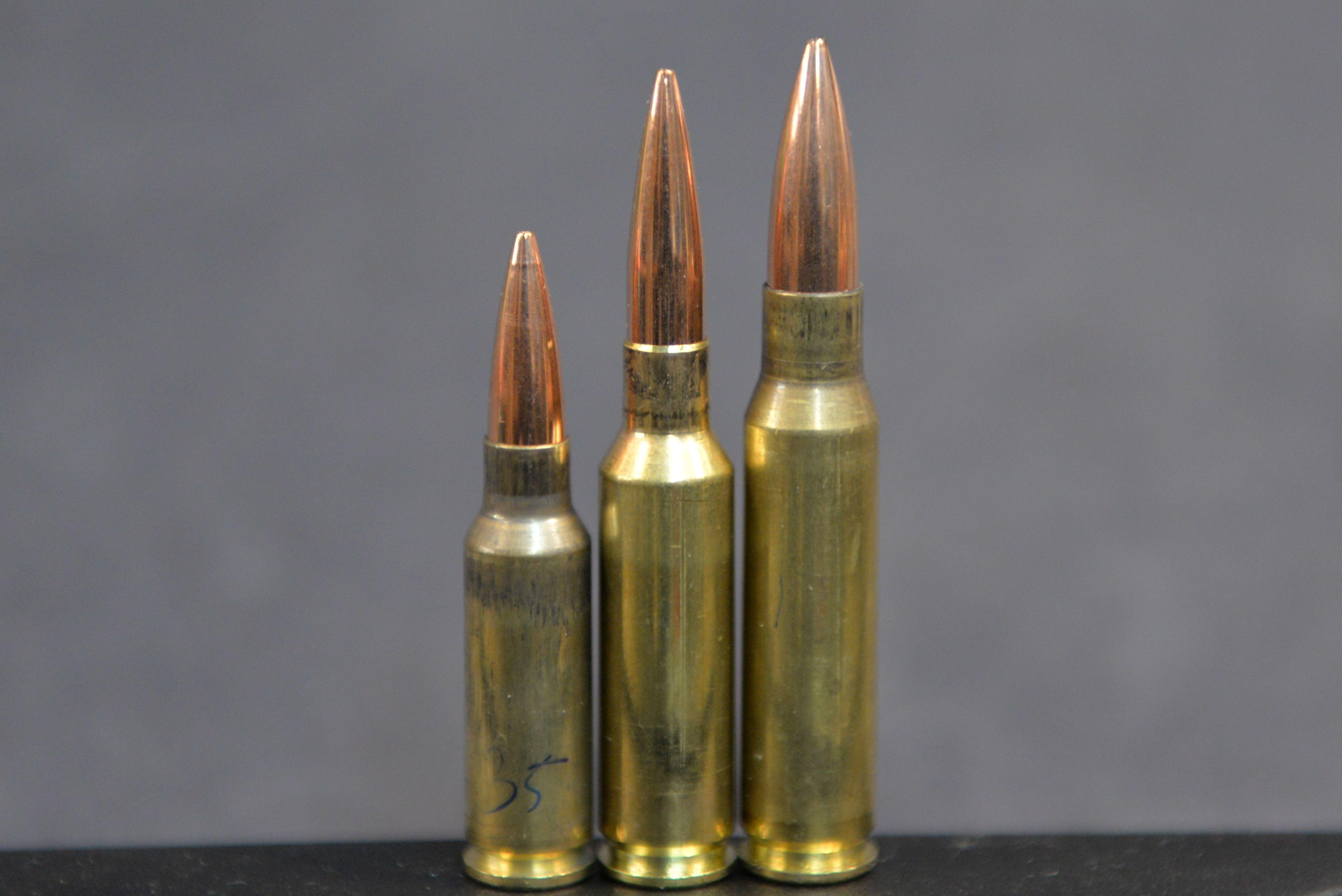 [Image: 6.5-Grendel-6.5x47-Lapua-308-Winchester.jpg]