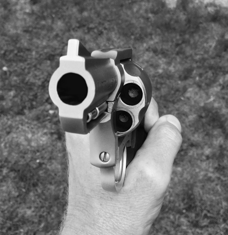 Image result for Charter Arms Pitbull Revolver in .45 ACP Review
