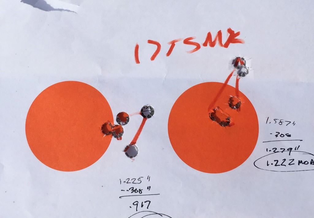 savage 10 lss 175 smk